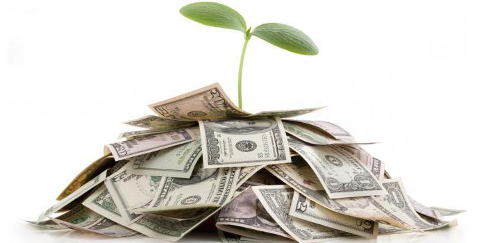 Целевые ориентиры социальных инвестиций